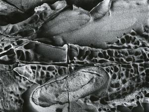 Rock Formation, c. 1970 by Brett Weston