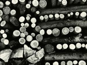 Stacked Wood, Europe, 1972 by Brett Weston