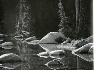 Water, Rock, Tree Reflection, High Sierra, c. 1970 by Brett Weston