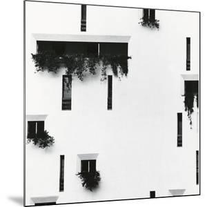 Windows and Building, Puerto Vallarta, Mexico, 1976 by Brett Weston