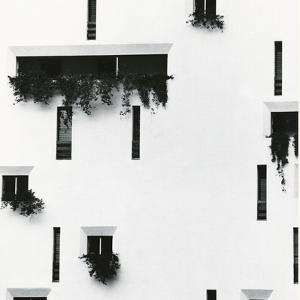 Windows and Building, Puerto Vallarta, Mexico, 1976 by Brett Weston