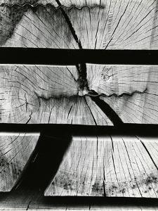 Wood Absraction, Europe, 1971 by Brett Weston