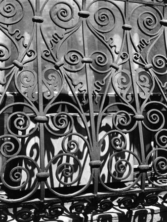 Wrought Iron, New York, 1943 by Brett Weston