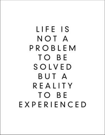 Life is Not a Problem to be Solved But a Reality to be Experienced by Brett Wilson