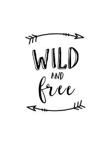 Wild and Free by Brett Wilson