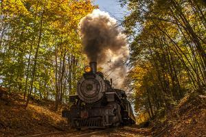 The Essex Steam Train Chugging Through a Forest in Autumn Foliage by Brian Drouin