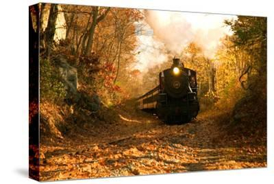 The Essex Steam Train Chugs Through the Autumn Forest