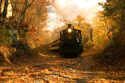 The Essex Steam Train Chugs Through the Autumn Forest by Brian Drouin