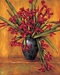 Red Irises by Brian Francis