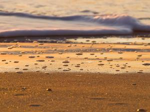 Close-Up of Surf on Wrightsville Beach at Sunrise by Brian Gordon Green