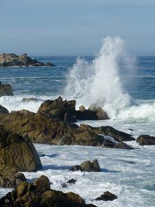 Surf Pounding the Rocks Along the Monterey Bay Coast by Brian Gordon Green