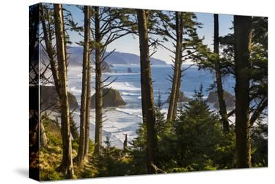 Coastline at Cannon Beach, Viewed Through the Trees, Ecola SP, Oregon