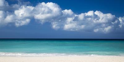 White Sandy Beach at Eagle Beach Near Oranjestad, Aruba, West Indies by Brian Jannsen