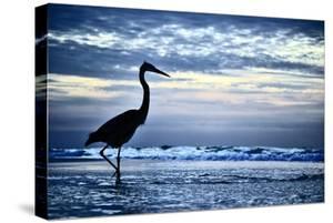 Pensacola Beach by Brian Keith Lorraine
