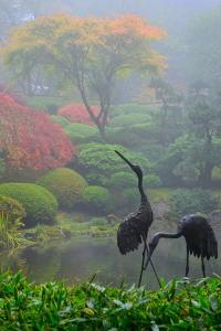 Gardens in the Fog I by Brian Moore