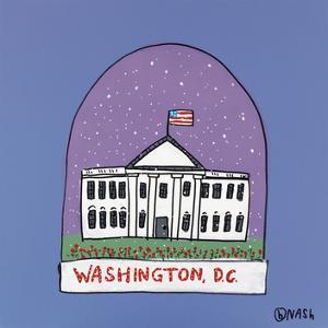 Washington D.C. Snow Globe by Brian Nash
