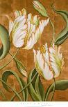 A Cappella II-Brian O'neill-Art Print