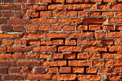 Brick Wall-Catharina Lux-Photographic Print