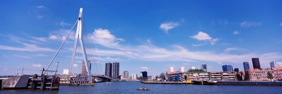 Bridge Across a River, Erasmus Bridge, Nieuwe Maas River, Noordereiland, Rotterdam, South Holland--Photographic Print