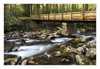 Bridge and Cascade I-Danny Head-Giclee Print