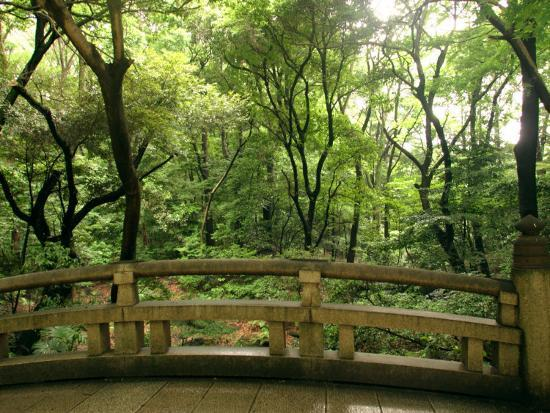 Bridge and Garden at Yoyogi-Koen, Tokyo, Kanto, Japan-Greg Elms-Photographic Print