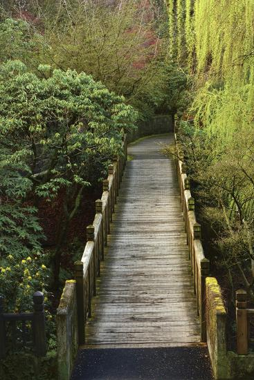 Bridge, Crystal Springs Rhododendron Garden, Portland, Oregon, Usa-Michel Hersen-Photographic Print