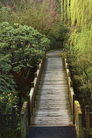 https://imgc.artprintimages.com/img/print/bridge-crystal-springs-rhododendron-garden-portland-oregon-usa_u-l-prq85c0.jpg?p=0