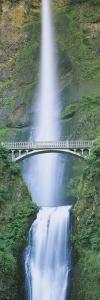 Bridge near a Waterfall, Multnomah Falls, Benson Bridge, Oregon, USA