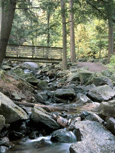 Bridge over Waterfall in a Forest--Photographic Print