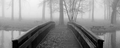 Bridge to Mist--Art Print