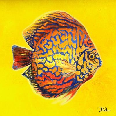 Bright Aquatic Life I-Patricia Pinto-Premium Giclee Print