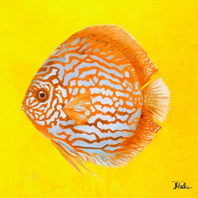 Bright Aquatic Life IV-Patricia Pinto-Premium Giclee Print