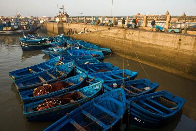 Bright Blue Fishing Boats Float in the Harbor of Essaouira-Cristina Mittermeier-Photographic Print
