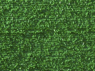 Bright Green Astroturf--Photographic Print