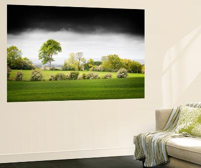 Bright Lights-Philippe Sainte-Laudy-Wall Mural