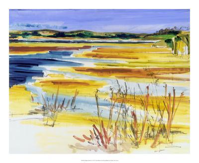 https://imgc.artprintimages.com/img/print/bright-marsh-i_u-l-f97bpg0.jpg?p=0
