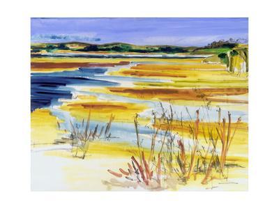 https://imgc.artprintimages.com/img/print/bright-marsh-i_u-l-q1blcpa0.jpg?p=0
