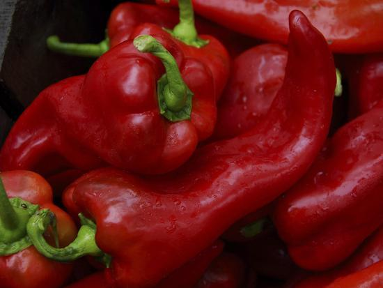 Bright Red Peppers at Farmers Market, Portland, Maine-Nance Trueworthy-Photographic Print