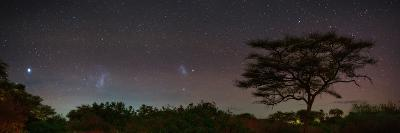 Bright Star Canopus, Large and Small Magellanic Clouds, Red and Green Airglow over Acacia Trees-Babak Tafreshi-Photographic Print