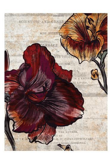 Brilliant Blooms 1-Kimberly Allen-Art Print