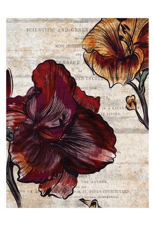 https://imgc.artprintimages.com/img/print/brilliant-blooms-1_u-l-f9a5lm0.jpg?p=0