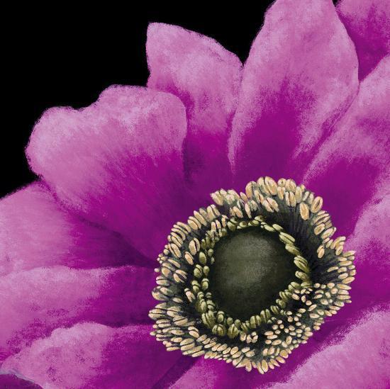 Brilliant Blooms II-Linda Wood-Art Print