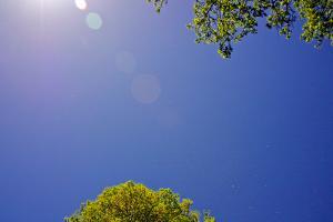 Brilliant Blue Sky