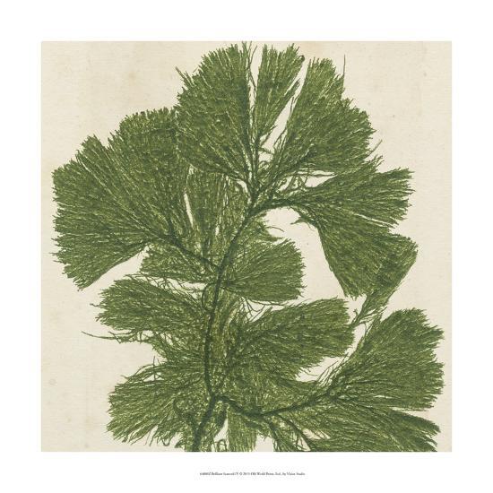 Brilliant Seaweed IV--Art Print