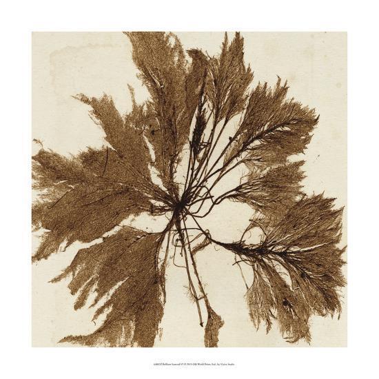 Brilliant Seaweed VI--Art Print