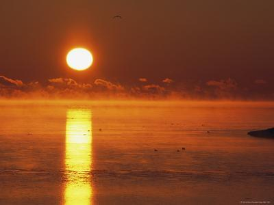 Brilliant Sunrise over Nosuke Bay with Water Birds-Tim Laman-Photographic Print