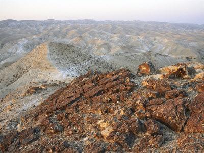 Israel, Judea: Scene of Judean Hills East of Jerusalem