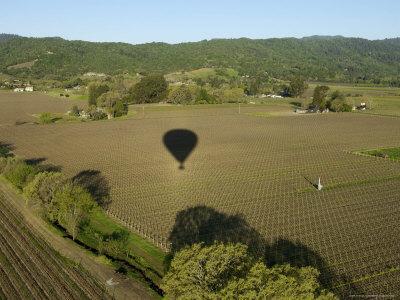 Napa Valley, USA: Hot Air Balloon Flying over Vineyards, California