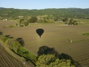Napa Valley, USA: Hot Air Balloon Flying over Vineyards, California by Brimberg & Coulson