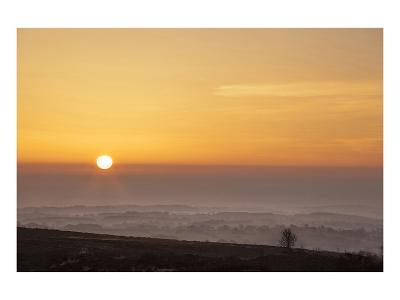 Brimham Dawn--Art Print